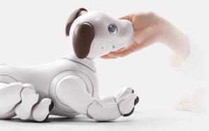 Sony Aibo Robot Dog and Pet